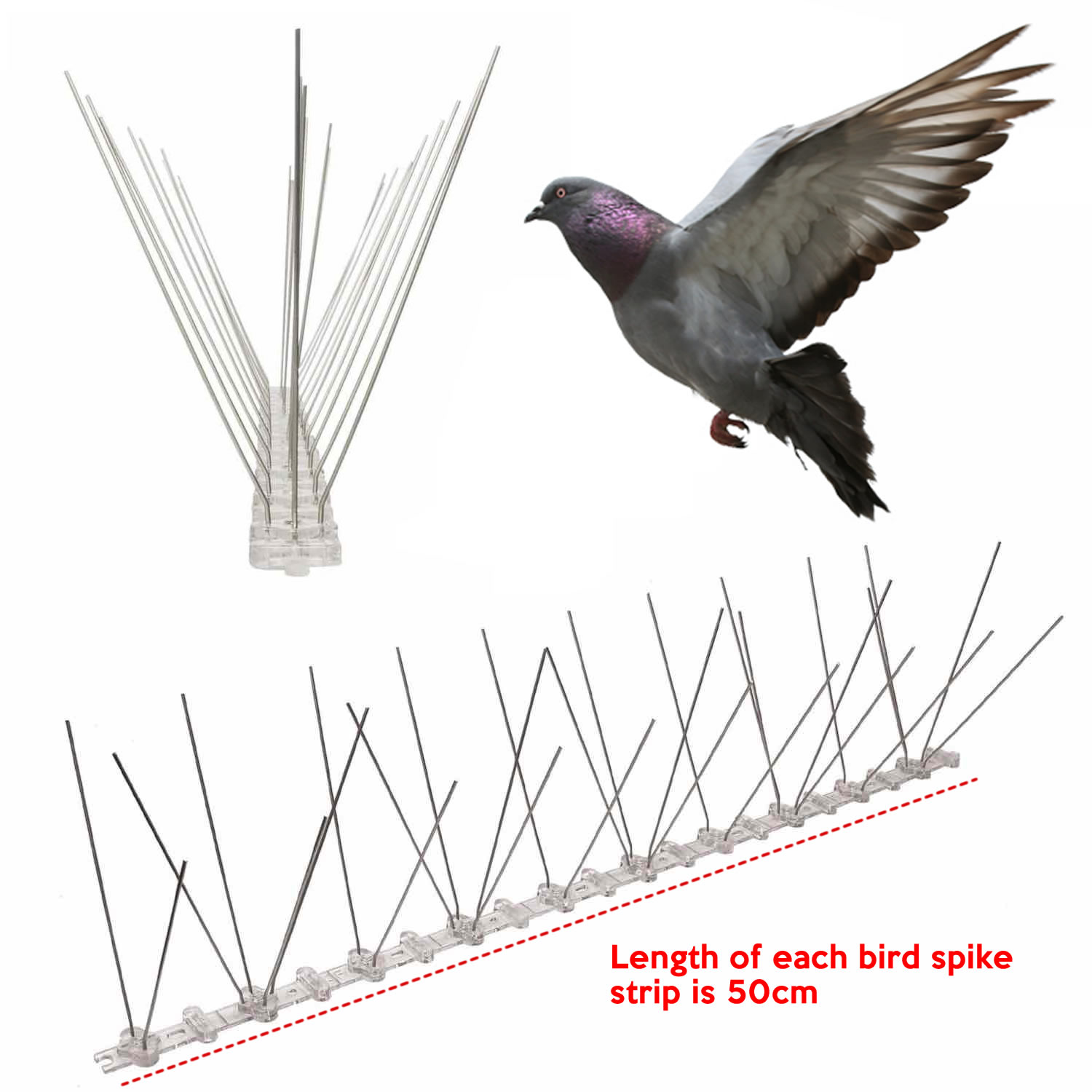 cheapest pigeon spikes supplier online