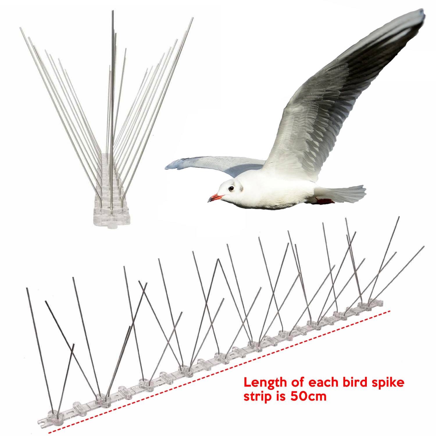 cheapest seagull spike supplier online